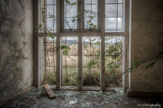 Ferestrele magice: Aduc un aer viu cladirilor abandonate - Poza 4