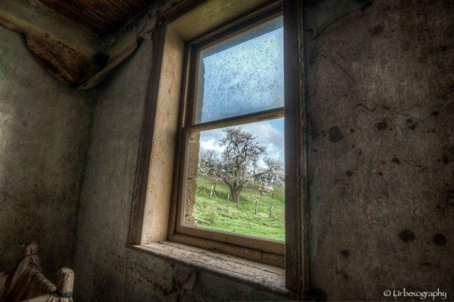 Ferestrele magice: Aduc un aer viu cladirilor abandonate - Poza 5