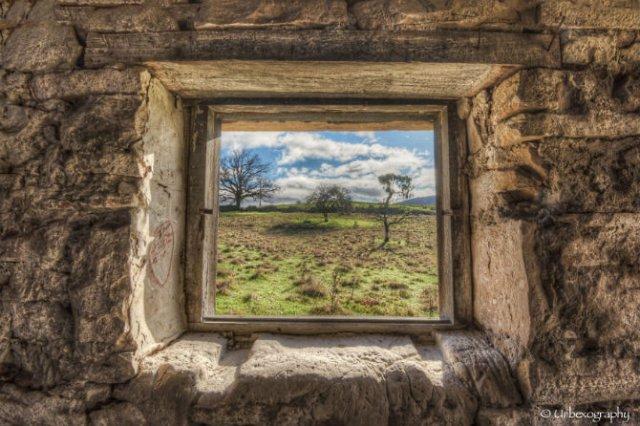 Ferestrele magice: Aduc un aer viu cladirilor abandonate - Poza 7