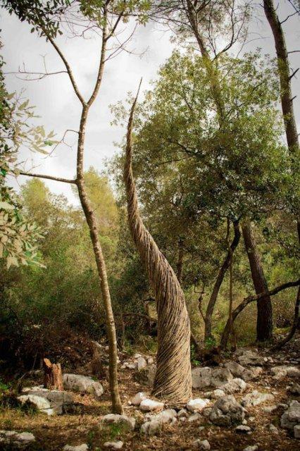 Jocul reinnoirii: Sculpturi mistice in natura, pentru natura - Poza 5