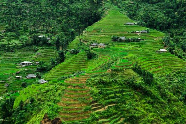 Vietnam, un mozaic al contrastelor, in 13 poze superbe - Poza 9