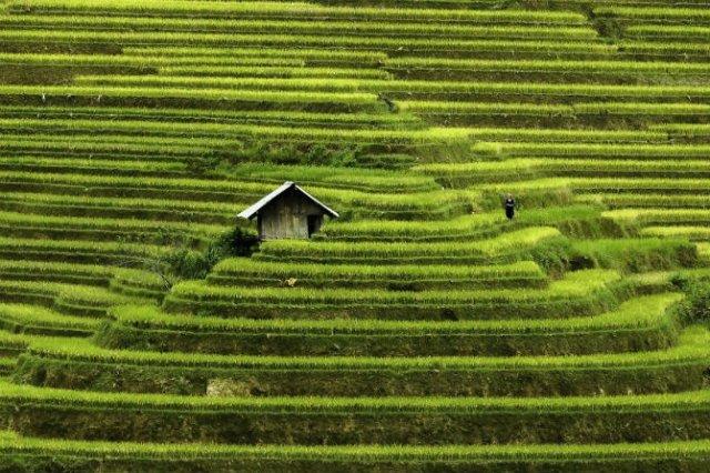 Vietnam, un mozaic al contrastelor, in 13 poze superbe - Poza 2