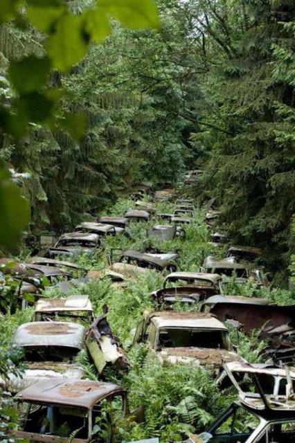 Cele mai frumoase locuri abandonate din lume - Poza 11