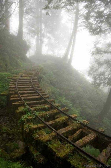 Cele mai frumoase locuri abandonate din lume - Poza 12