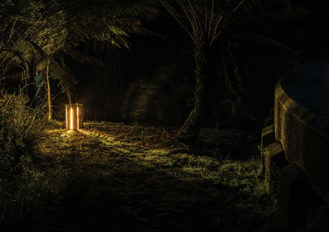 Creeaza cu lumina care-i lipseste: Buturugi luminoase, cu Duncan Meerd - Poza 10