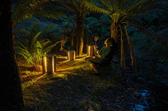 Creeaza cu lumina care-i lipseste: Buturugi luminoase, cu Duncan Meerd - Poza 5
