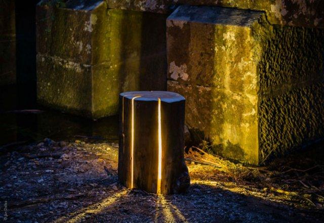 Creeaza cu lumina care-i lipseste: Buturugi luminoase, cu Duncan Meerd - Poza 8