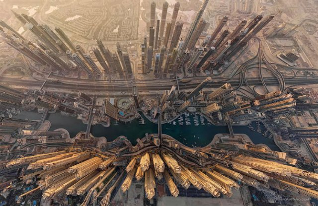 Cum vad pasarile lumea: Opt imagini care iti taie respiratia - Poza 2
