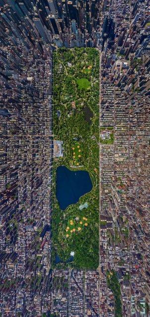 Cum vad pasarile lumea: Opt imagini care iti taie respiratia - Poza 8