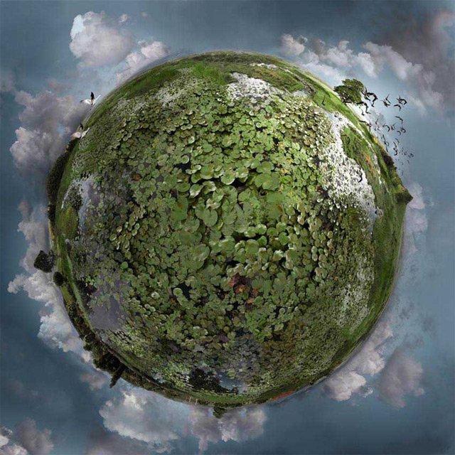 Lumi miniaturale: O poezie vizuala, de Catherine Nelson - Poza 5