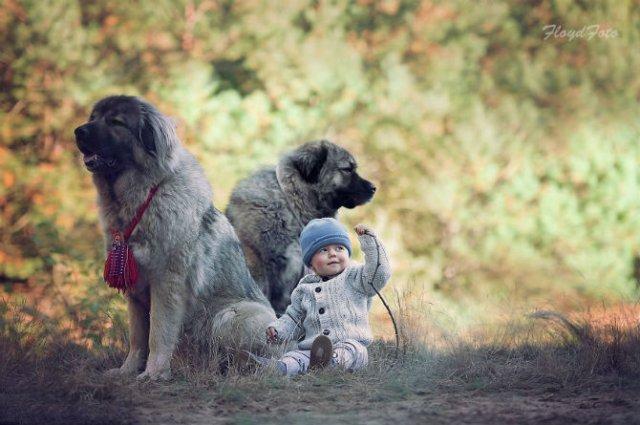 Conexiunea dintre om si animale, in imagini sugestive - Poza 5