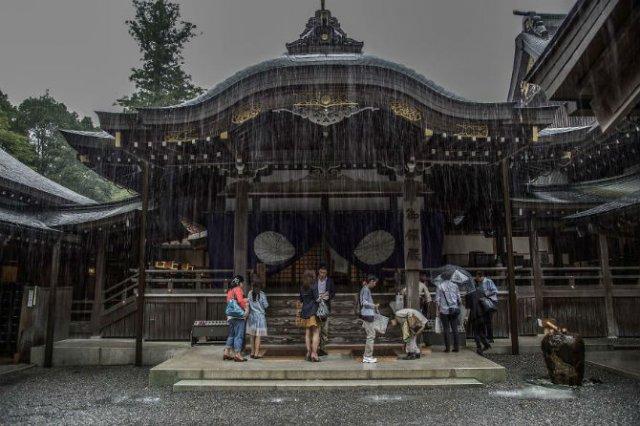 Uimitoarea Japonie, in sezonul ploios - Poza 2