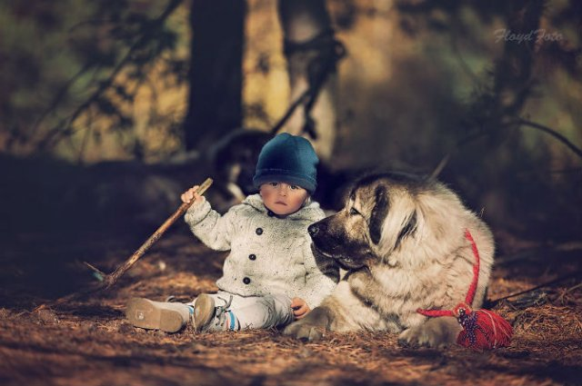 Conexiunea dintre om si animale, in imagini sugestive - Poza 1