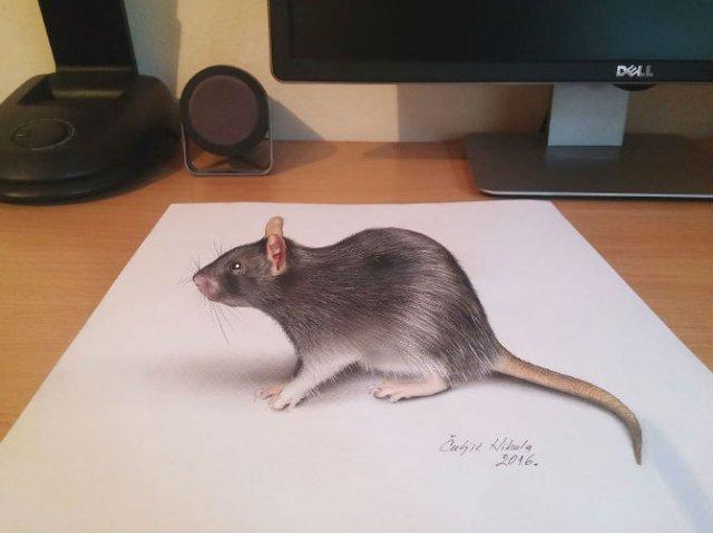Desene 3D, pentru bruiajul privitorilor - Poza 10