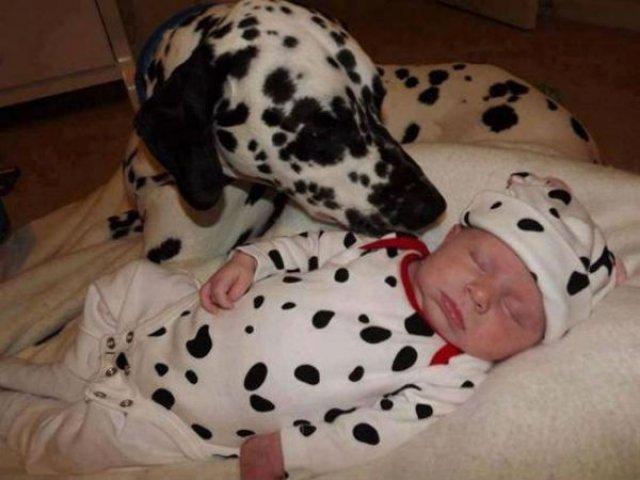 Copii si animale, intr-un pictorial adorabil - Poza 16