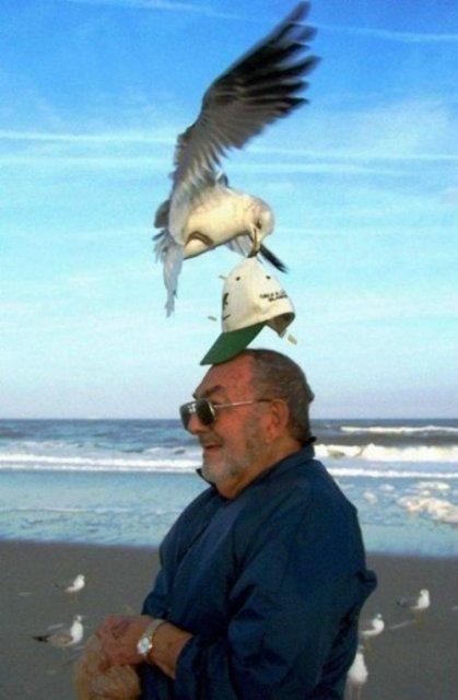 Momente haioase de pe litoral, in imagini savuroase - Poza 1
