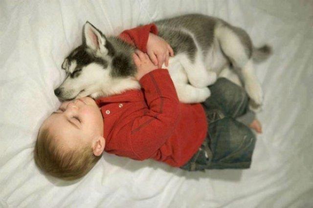 Copii si animale, intr-un pictorial adorabil - Poza 11