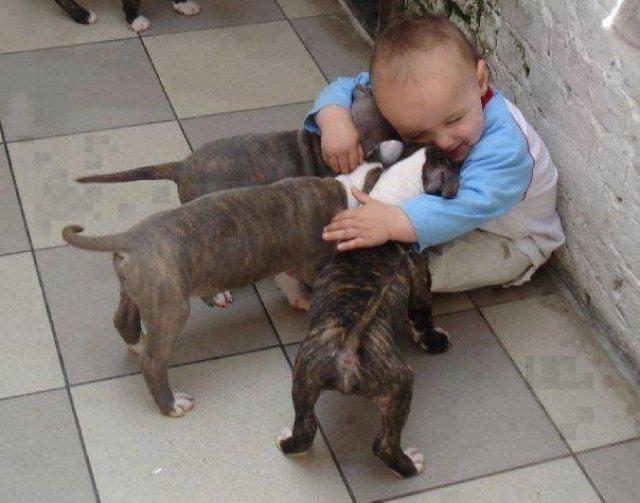 Copii si animale, intr-un pictorial adorabil - Poza 15