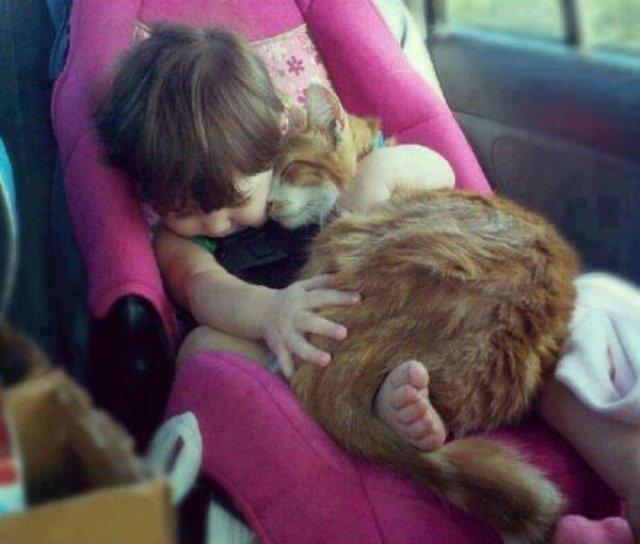 Copii si animale, intr-un pictorial adorabil - Poza 13