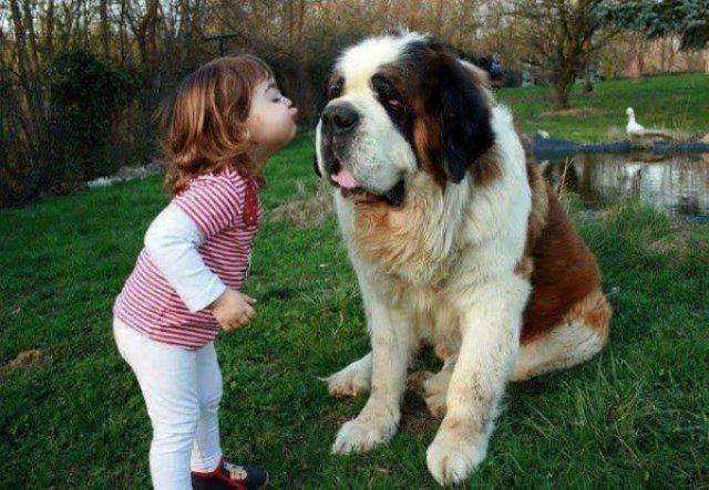 Copii si animale, intr-un pictorial adorabil - Poza 14