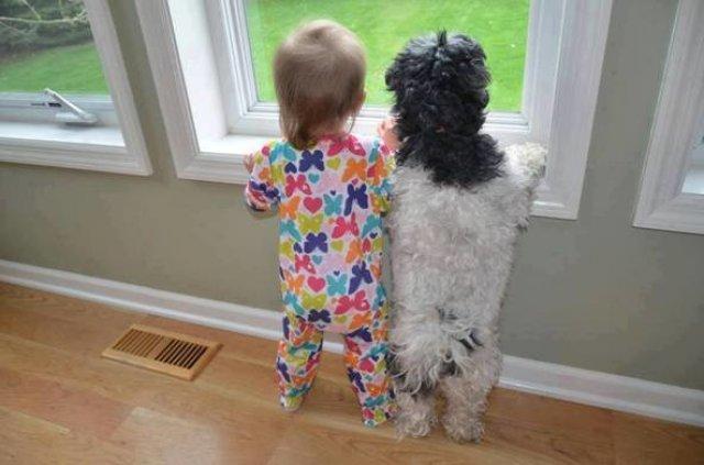 Copii si animale, intr-un pictorial adorabil - Poza 9