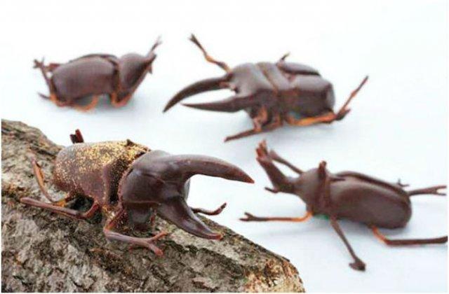 Arta, dulce arta: Creatii delicioase din ciocolata - Poza 4