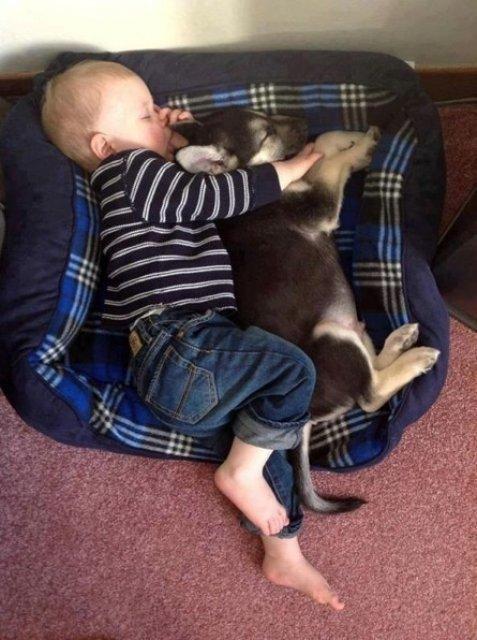 Copii si animale, intr-un pictorial adorabil - Poza 10
