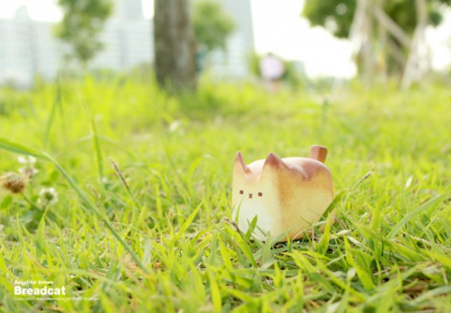 Pentru iubitorii de feline: Pisicute decorative, de Rato Kim - Poza 2