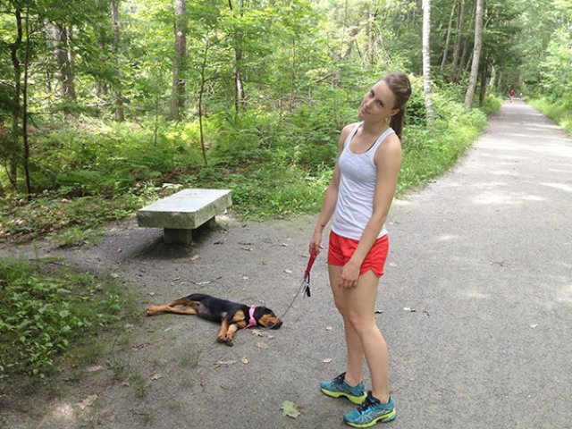 Cele mai haioase pozitii in care dorm animalele - Poza 16