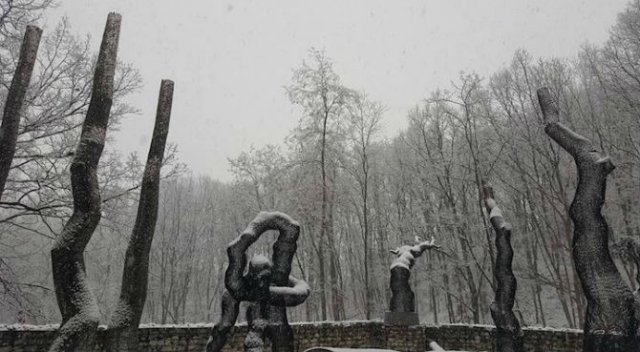 Arbori tesuti din metal, de Lee Gil Rae - Poza 7