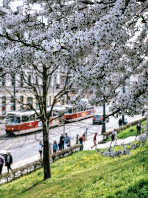 Praga, in ipostaze superbe - Poza 12