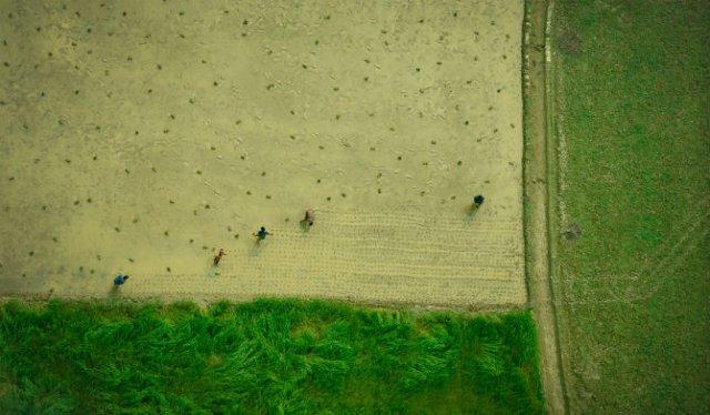 Frumuseta Bangladeshului, prin ochii unui aviator - Poza 4