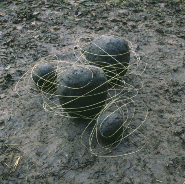 Ansambluri artistice cu resturi din natura - Poza 1
