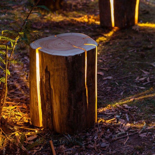 Creeaza cu lumina care-i lipseste: Buturugi luminoase, cu Duncan Meerd - Poza 2