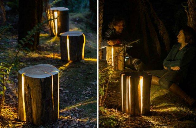 Creeaza cu lumina care-i lipseste: Buturugi luminoase, cu Duncan Meerd - Poza 3