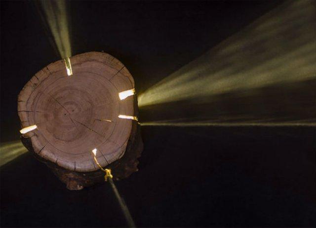 Creeaza cu lumina care-i lipseste: Buturugi luminoase, cu Duncan Meerd - Poza 4