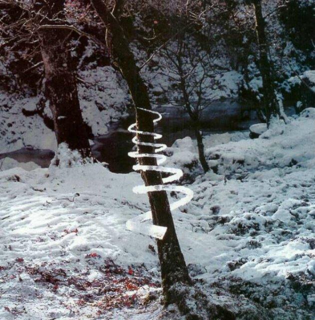 Ansambluri artistice cu resturi din natura - Poza 3