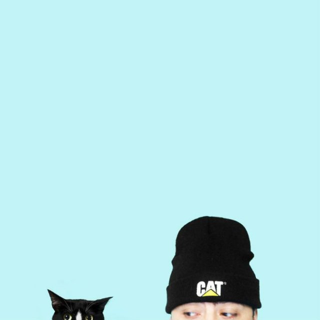 Cheeto, o pisica haioasa, intr-un pictorial trasnit - Poza 15