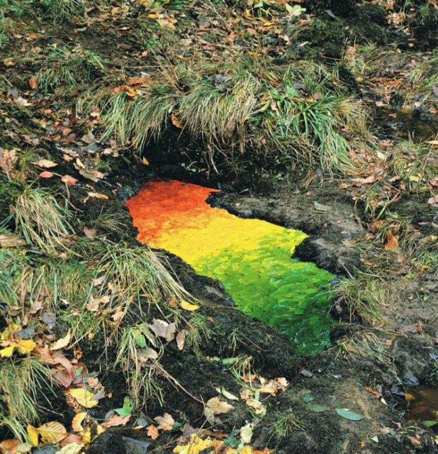 Ansambluri artistice cu resturi din natura - Poza 5