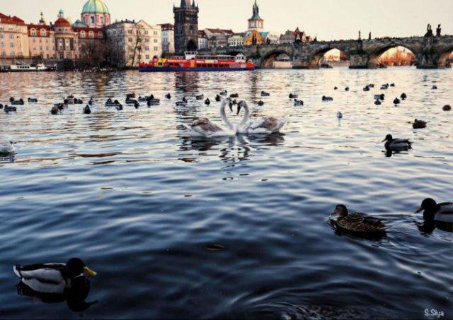 Praga, in ipostaze superbe - Poza 4