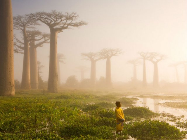 National Geographic: Cele mai bune fotografii din 2015 - Poza 5