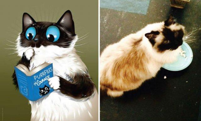 Portrete simpatice cu pisici si caini - Poza 11