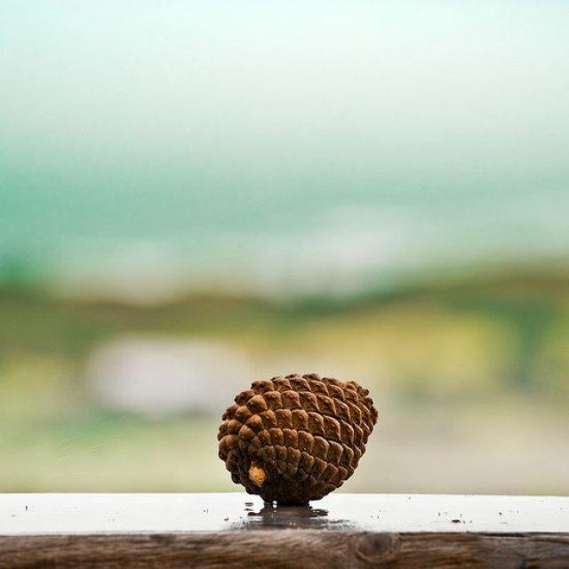 25 de poze minimaliste, dar de mare efect! - Poza 18