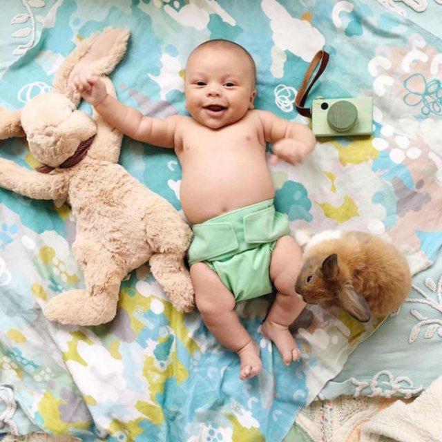 Un baietel si patru iepurasi, in fotografii adorabile - Poza 9