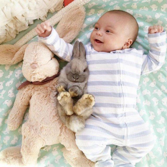Un baietel si patru iepurasi, in fotografii adorabile - Poza 1