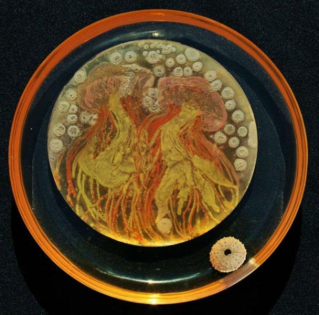 Creatii stiintifice: Arta cu microbi si bacterii - Poza 11