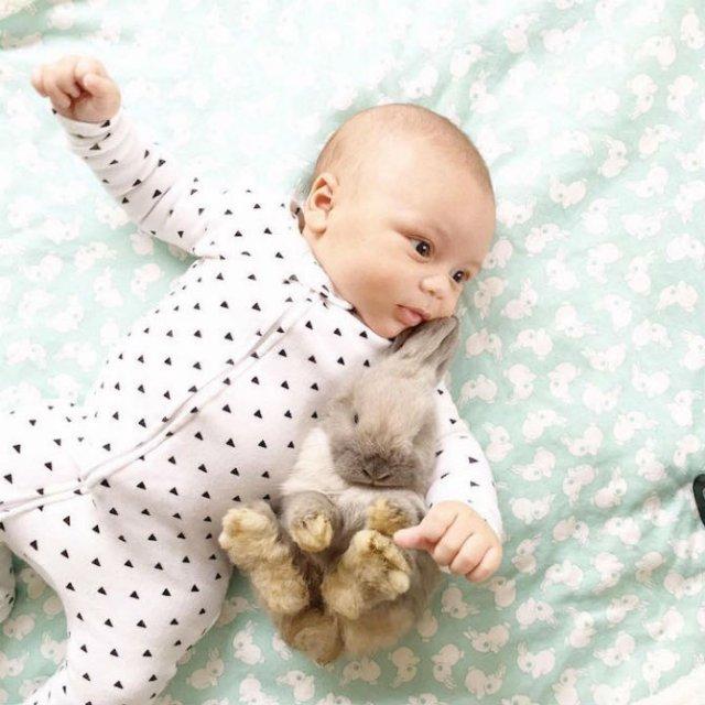 Un baietel si patru iepurasi, in fotografii adorabile - Poza 2