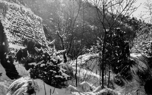 Frumusetea Indiei in alb si negru - Poza 6