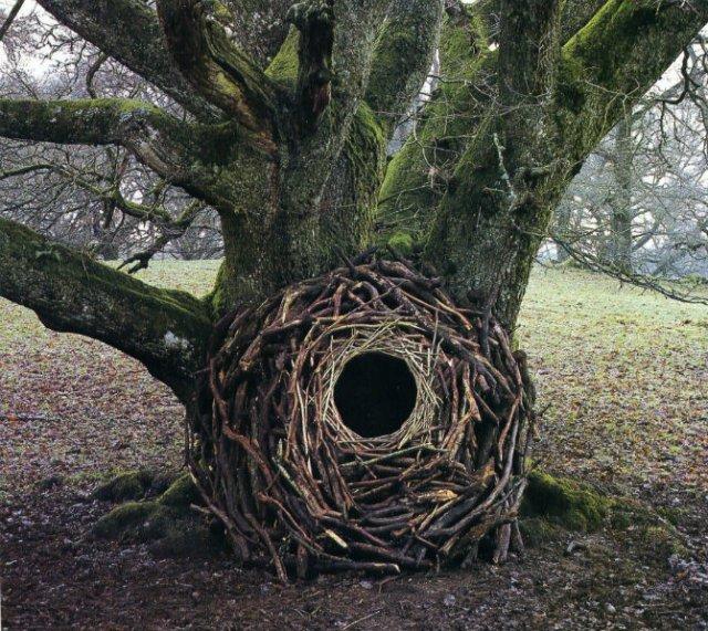 Ansambluri artistice cu resturi din natura - Poza 10
