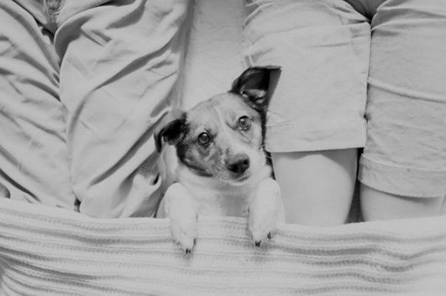 Adorabil! O altfel de sedinta foto cu un nou-nascut - Poza 10